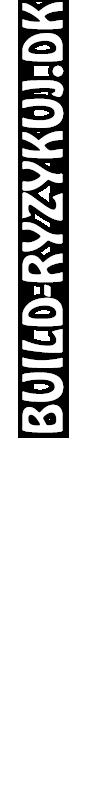 Build-Ryzykuj.DK